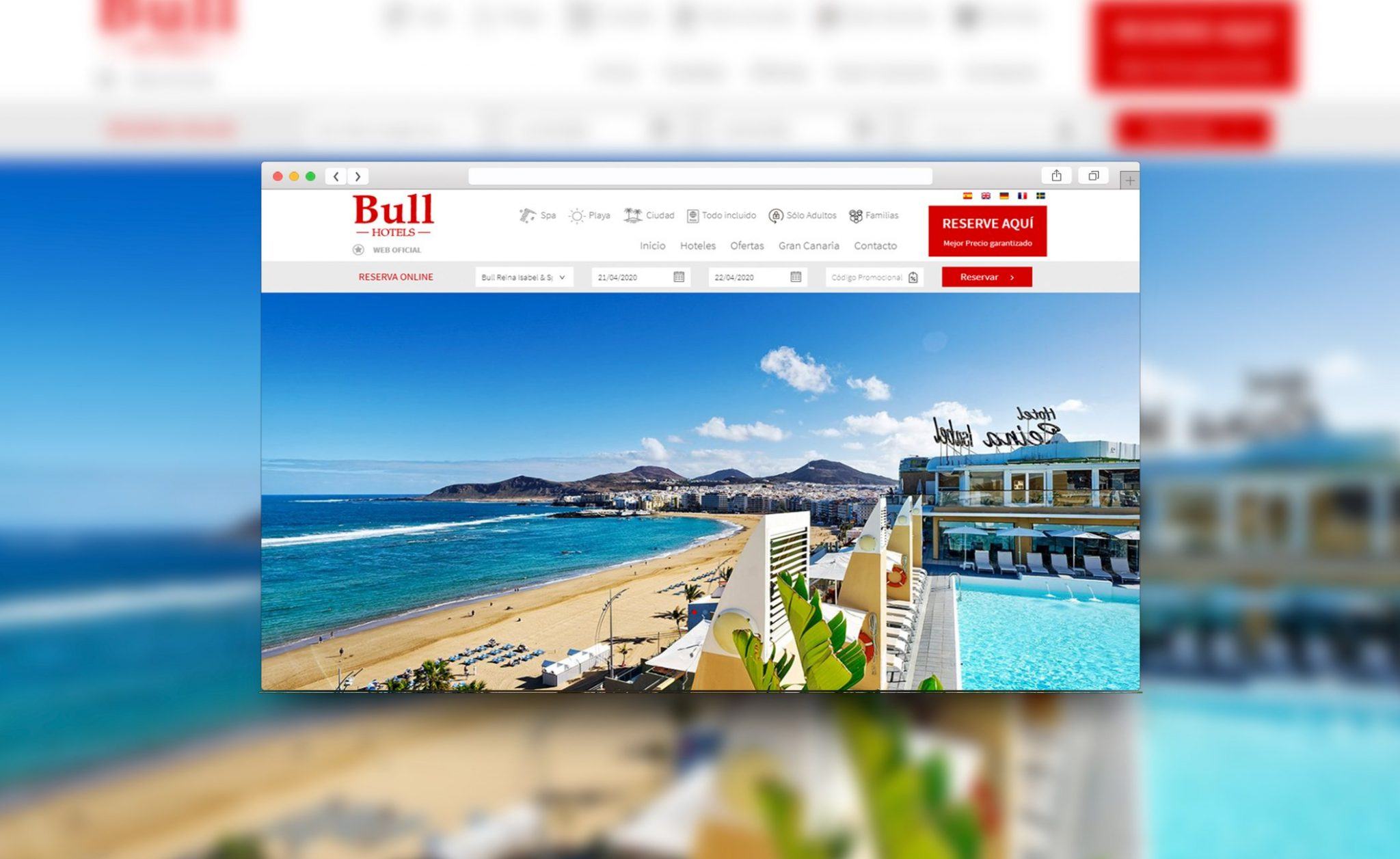 bull_web_neo