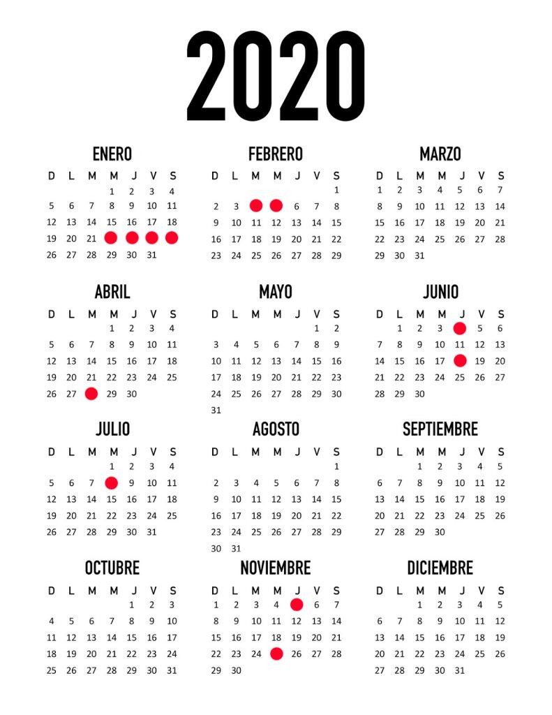 resumen año Neobookings, calendario